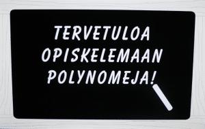 Polly Polynomi opetti peruskoululaisille polynomeja.